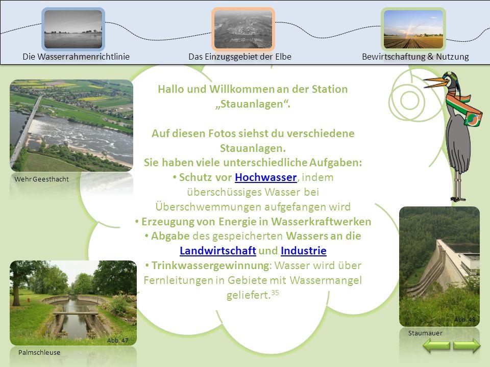 Das kannst du jetzt: Industriegebiete in Einzugsgebiet der Elbe aufsuchen die Nutzung der Gewässer in Industriegebieten und deren Auswirkung beschreib