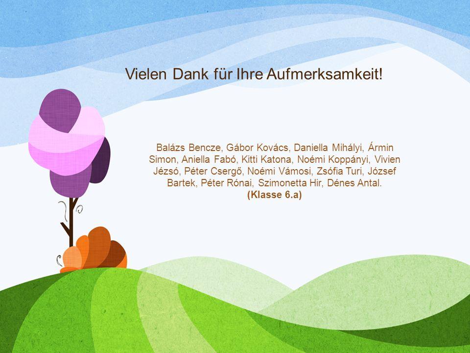 Vielen Dank für Ihre Aufmerksamkeit! Balázs Bencze, Gábor Kovács, Daniella Mihályi, Ármin Simon, Aniella Fabó, Kitti Katona, Noémi Koppányi, Vivien Jé