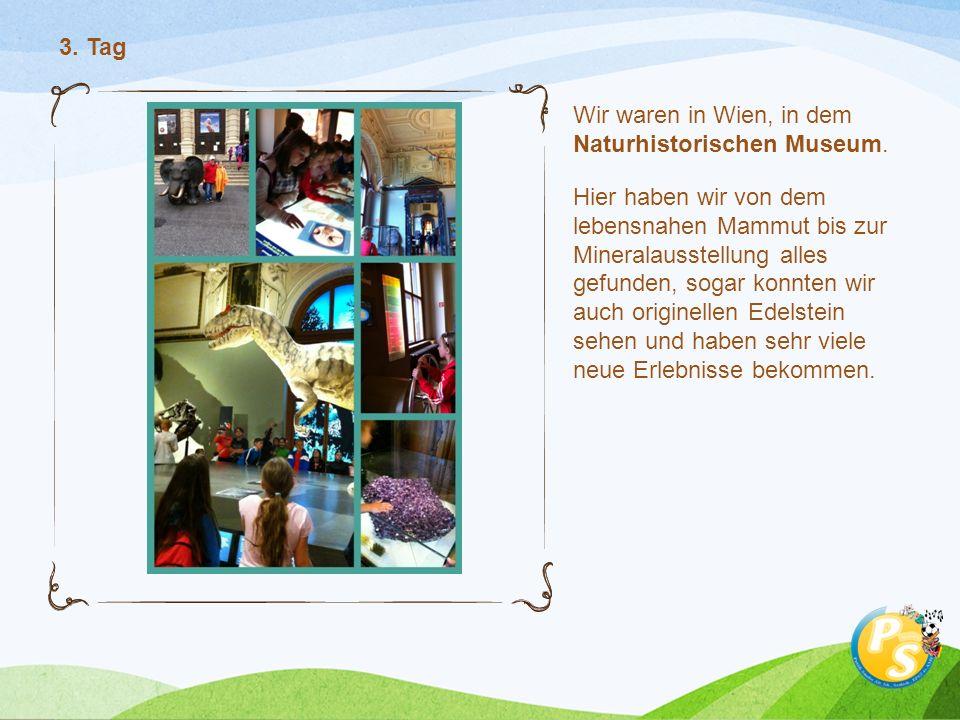 Wir waren in Wien, in dem Naturhistorischen Museum.