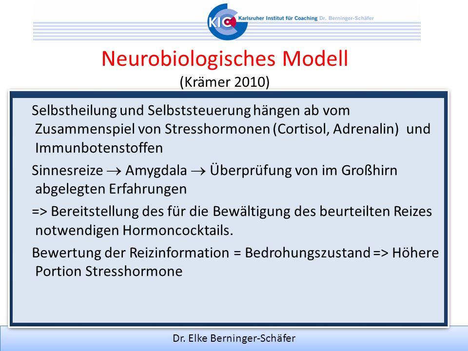 Neurobiologisches Modell (Krämer 2010) Selbstheilung und Selbststeuerung hängen ab vom Zusammenspiel von Stresshormonen (Cortisol, Adrenalin) und Immu