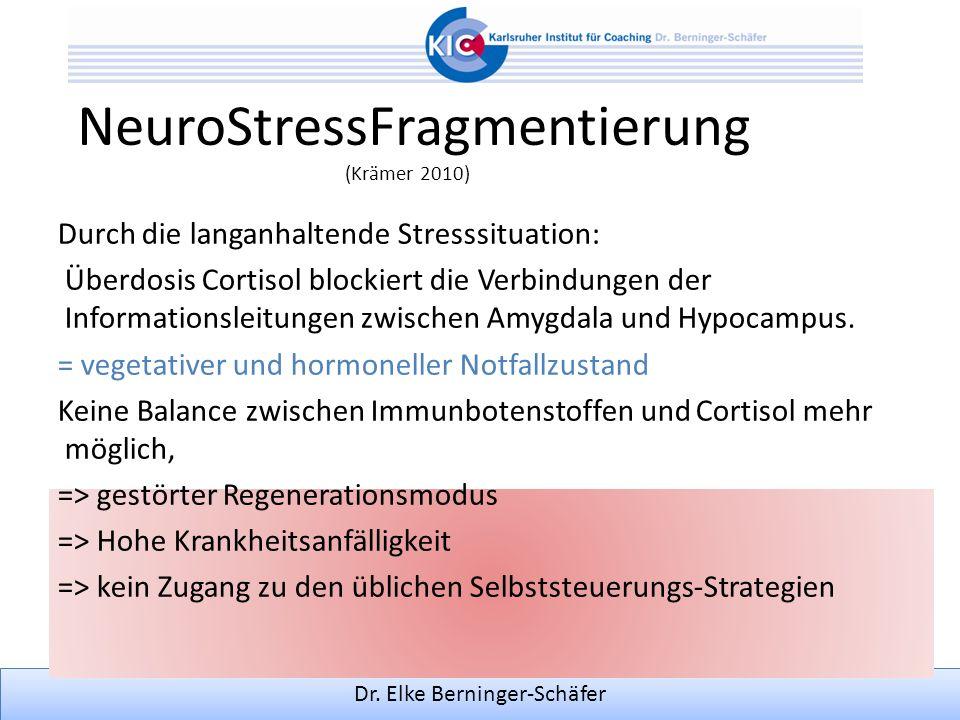 Dr. Elke Berninger-Schäfer NeuroStressFragmentierung (Krämer 2010) Durch die langanhaltende Stresssituation: Überdosis Cortisol blockiert die Verbindu