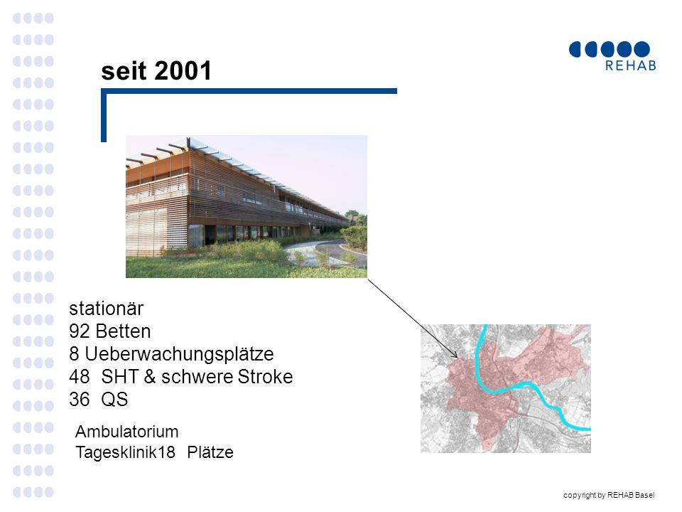 copyright by REHAB Basel PSS Diagnose und Evalutation : wegweisende neue Instrumente .