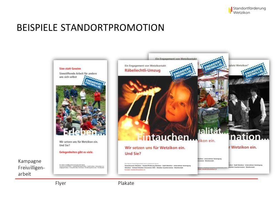 BEISPIELE STANDORTPROMOTION Kampagne Freiwilligen- arbeit Flyer Plakate