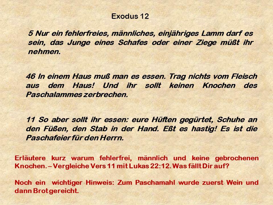 5 Nur ein fehlerfreies, männliches, einjähriges Lamm darf es sein, das Junge eines Schafes oder einer Ziege müßt ihr nehmen. Exodus 12 46 In einem Hau