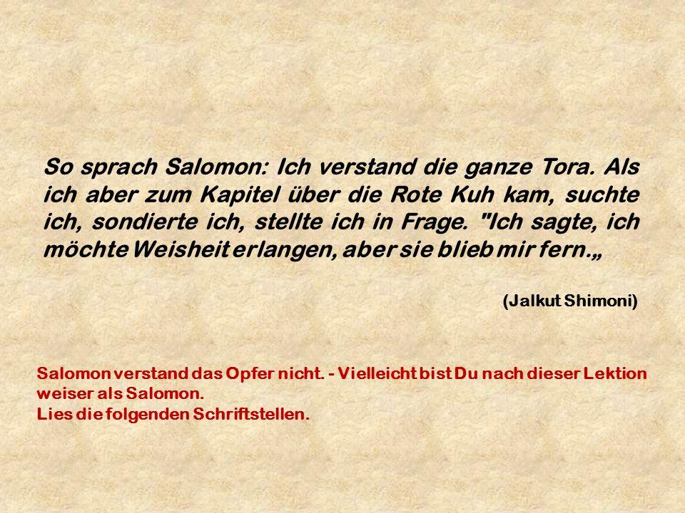 So sprach Salomon: Ich verstand die ganze Tora. Als ich aber zum Kapitel über die Rote Kuh kam, suchte ich, sondierte ich, stellte ich in Frage.