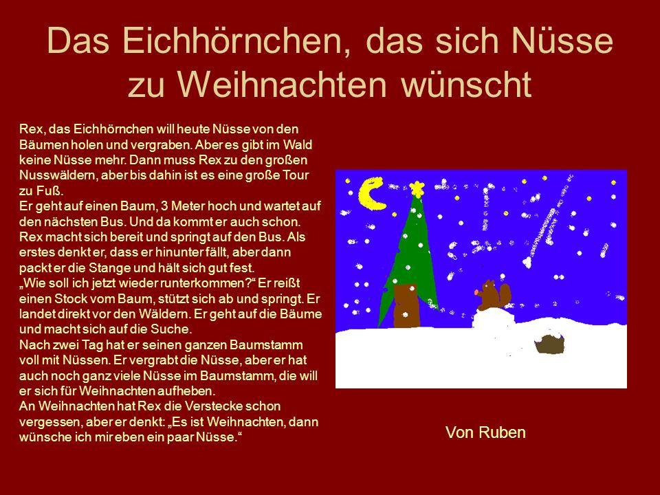 Das Eichhörnchen, das sich Nüsse zu Weihnachten wünscht Rex, das Eichhörnchen will heute Nüsse von den Bäumen holen und vergraben. Aber es gibt im Wal