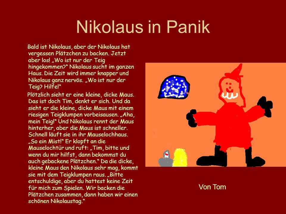 Nikolaus in Panik Bald ist Nikolaus, aber der Nikolaus hat vergessen Plätzchen zu backen. Jetzt aber los! Wo ist nur der Teig hingekommen? Nikolaus su
