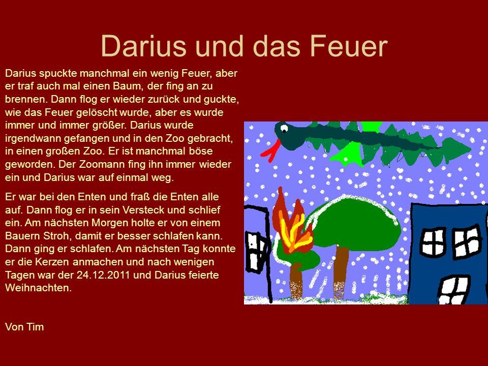 Darius und das Feuer Darius spuckte manchmal ein wenig Feuer, aber er traf auch mal einen Baum, der fing an zu brennen. Dann flog er wieder zurück und