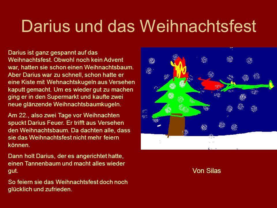 Darius und das Weihnachtsfest Darius ist ganz gespannt auf das Weihnachtsfest. Obwohl noch kein Advent war, hatten sie schon einen Weihnachtsbaum. Abe