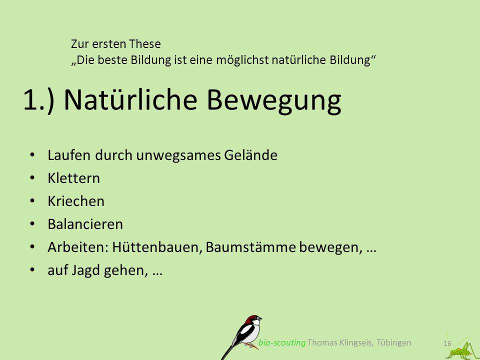 Zur ersten These Die beste Bildung ist eine möglichst natürliche Bildung 16 1.) Natürliche Bewegung bio-scouting Thomas Klingseis, Tübingen Laufen dur