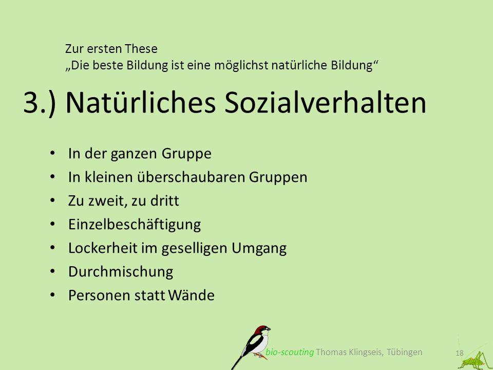 Zur ersten These Die beste Bildung ist eine möglichst natürliche Bildung 18 3.) Natürliches Sozialverhalten bio-scouting Thomas Klingseis, Tübingen In