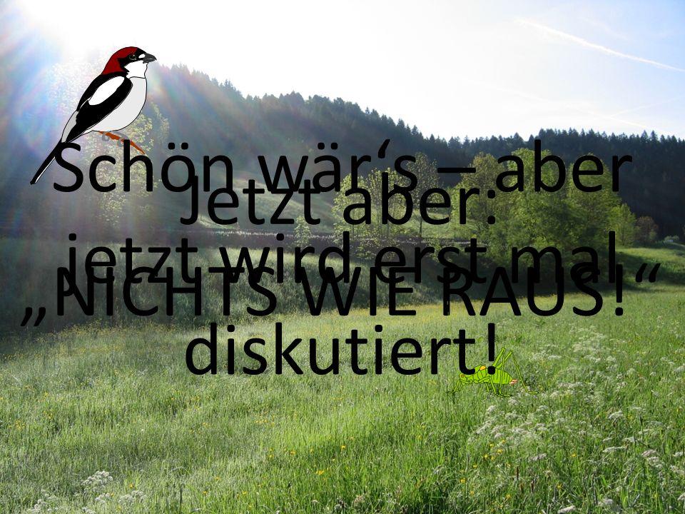 Ich danke für Ihre Aufmerksamkeit! bio-scouting Thomas Klingseis, Tübingen 31 Jetzt aber: NICHTS WIE RAUS! Schön wärs – aber jetzt wird erst mal disku