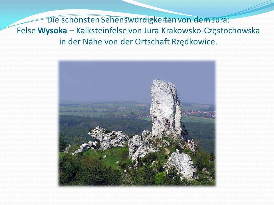 Die schönsten Sehenswürdigkeiten von dem Jura: Felse Wysoka – Kalksteinfelse von Jura Krakowsko-Częstochowska in der Nähe von der Ortschaft Rzędkowice