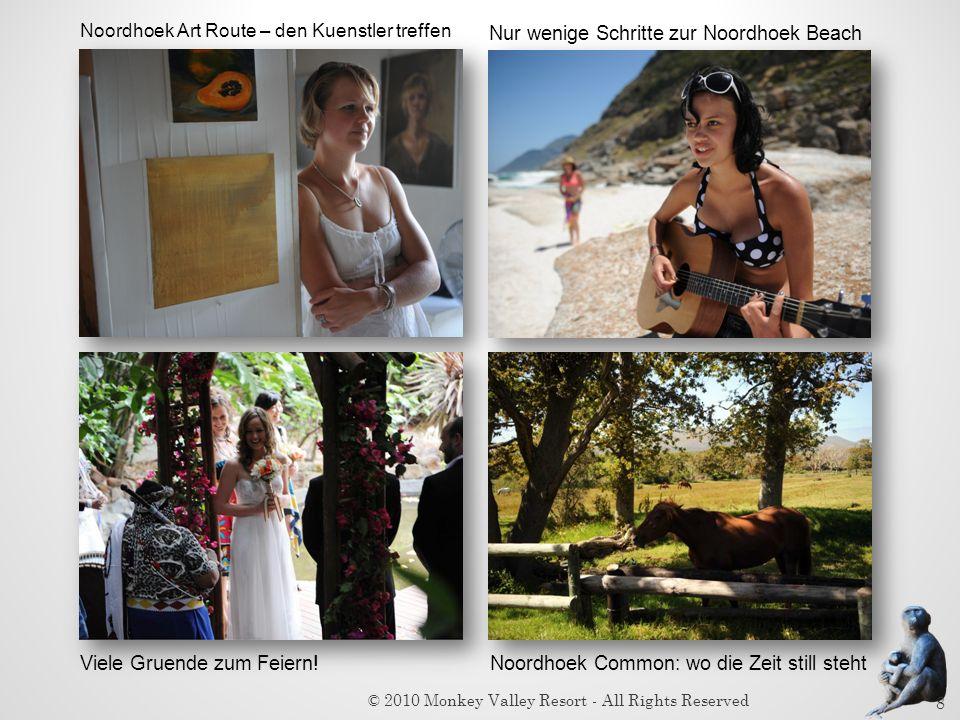 Viele Gruende zum Feiern! Noordhoek Art Route – den Kuenstler treffen Noordhoek Common: wo die Zeit still steht Nur wenige Schritte zur Noordhoek Beac