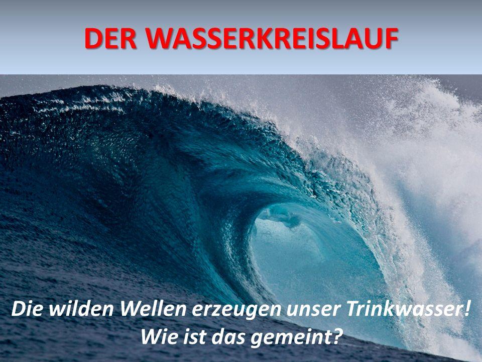 DER WASSERKREISLAUF Die wilden Wellen erzeugen unser Trinkwasser! Wie ist das gemeint?
