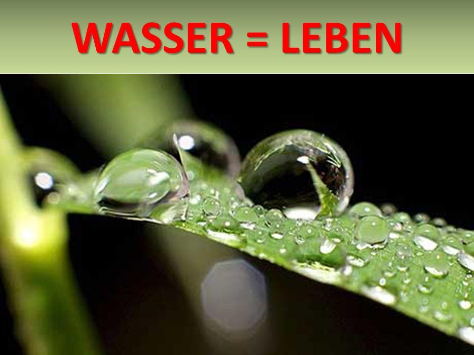 WASSER = LEBEN