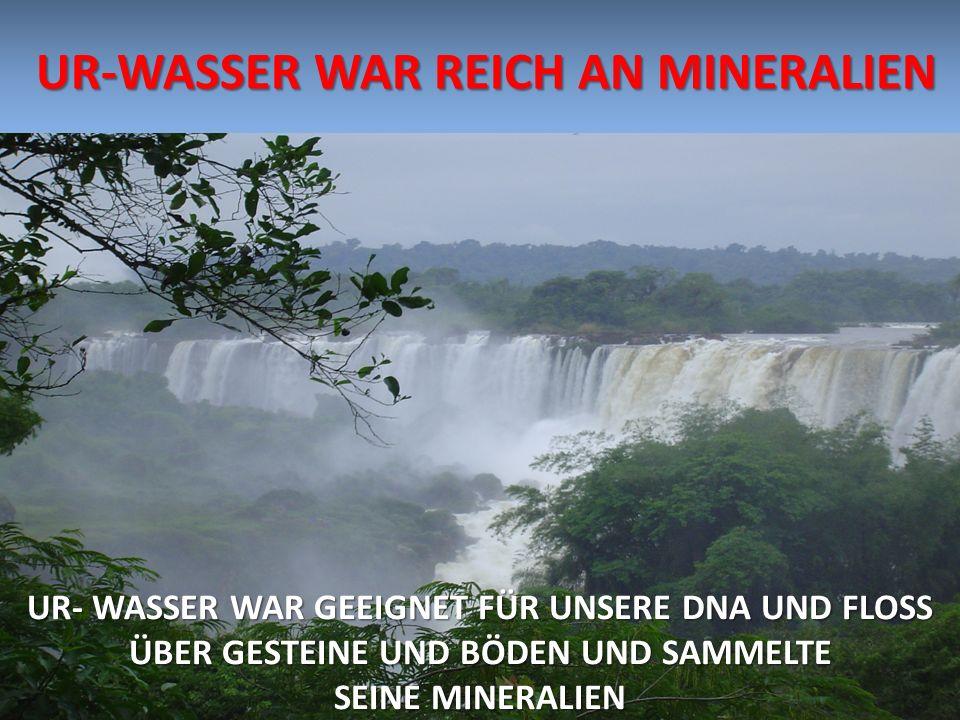 UR-WASSER WAR REICH AN MINERALIEN UR-WASSER WAR REICH AN MINERALIEN UR- WASSER WAR GEEIGNET FÜR UNSERE DNA UND FLOSS ÜBER GESTEINE UND BÖDEN UND SAMME