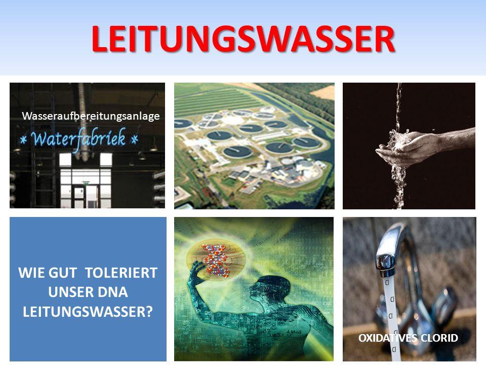 LEITUNGSWASSER WIE GUT TOLERIERT UNSER DNA LEITUNGSWASSER? OXIDATIVES CLORID ( Wasseraufbereitungsanlage