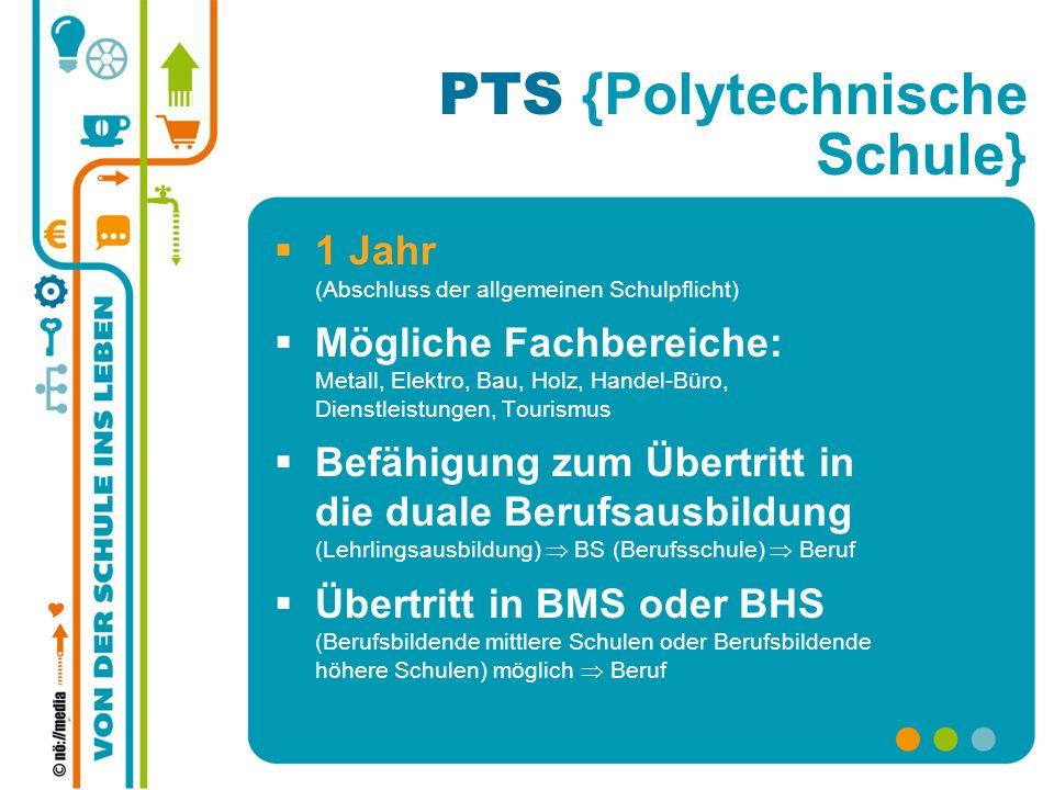 PTS {Polytechnische Schule} 1 Jahr (Abschluss der allgemeinen Schulpflicht) Mögliche Fachbereiche: Metall, Elektro, Bau, Holz, Handel-Büro, Dienstleis