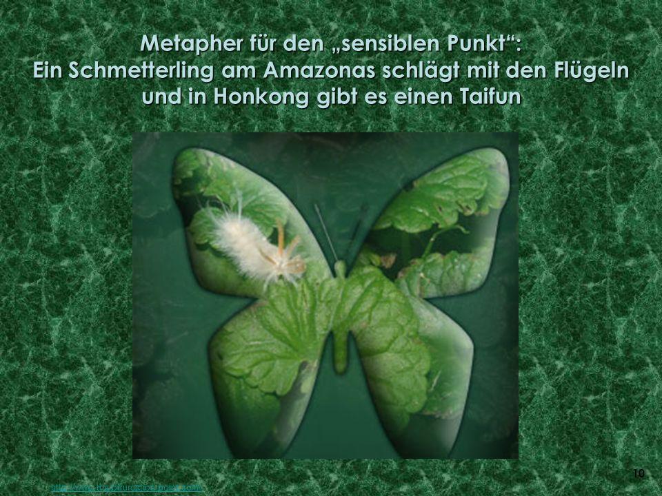 10 Metapher für den sensiblen Punkt: Ein Schmetterling am Amazonas schlägt mit den Flügeln und in Honkong gibt es einen Taifun http://www.the-bifurcat