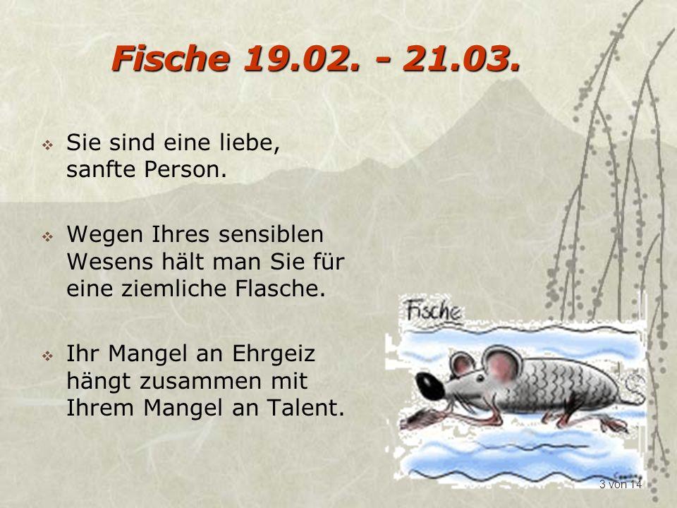 Steinbock 22.12.- 20.01. Sie sind konservativ und haben vor jedem Risiko Angst.