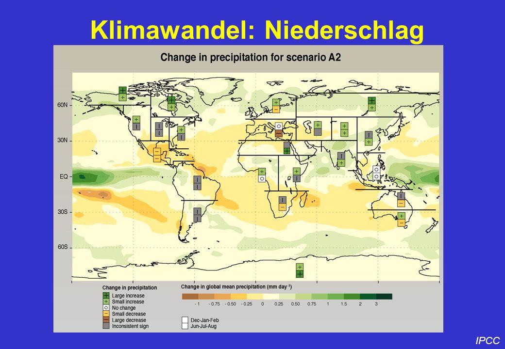 Klimawandel: Niederschlag IPCC