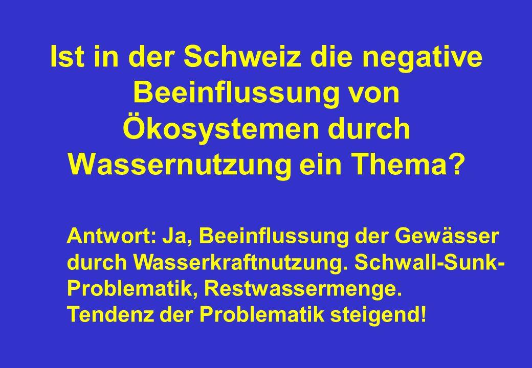 Ist in der Schweiz die negative Beeinflussung von Ökosystemen durch Wassernutzung ein Thema.