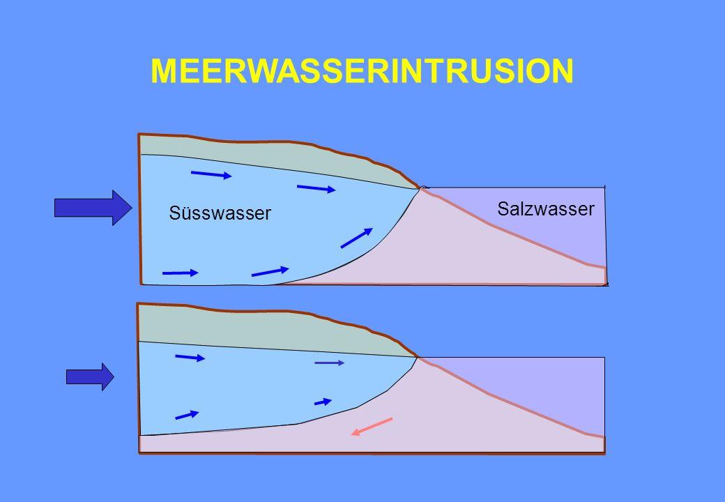 MEERWASSERINTRUSION Salzwasser Süsswasser