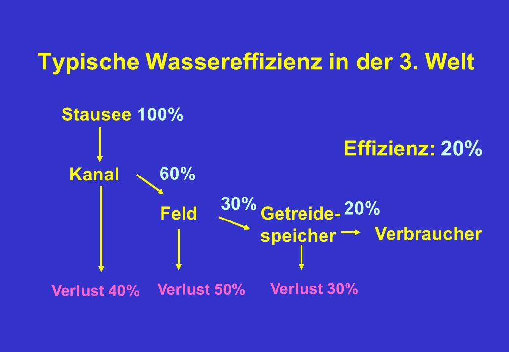 Typische Wassereffizienz in der 3.