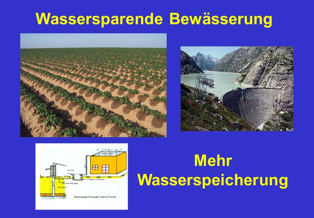 Wassersparende Bewässerung Mehr Wasserspeicherung