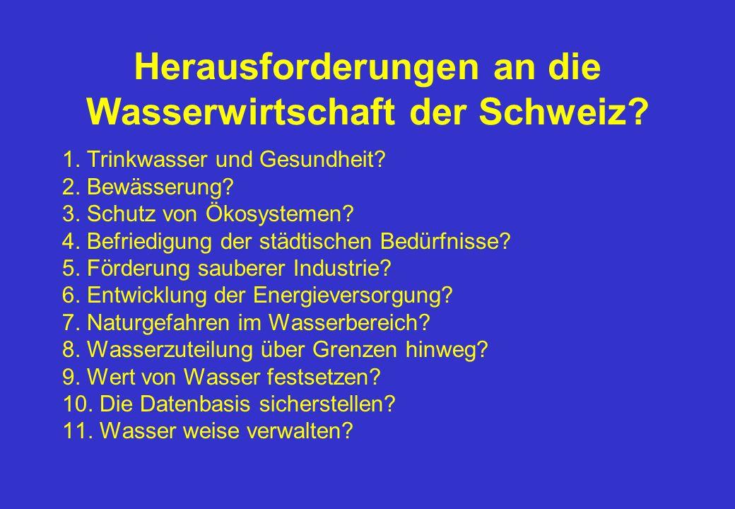 Herausforderungen an die Wasserwirtschaft der Schweiz.