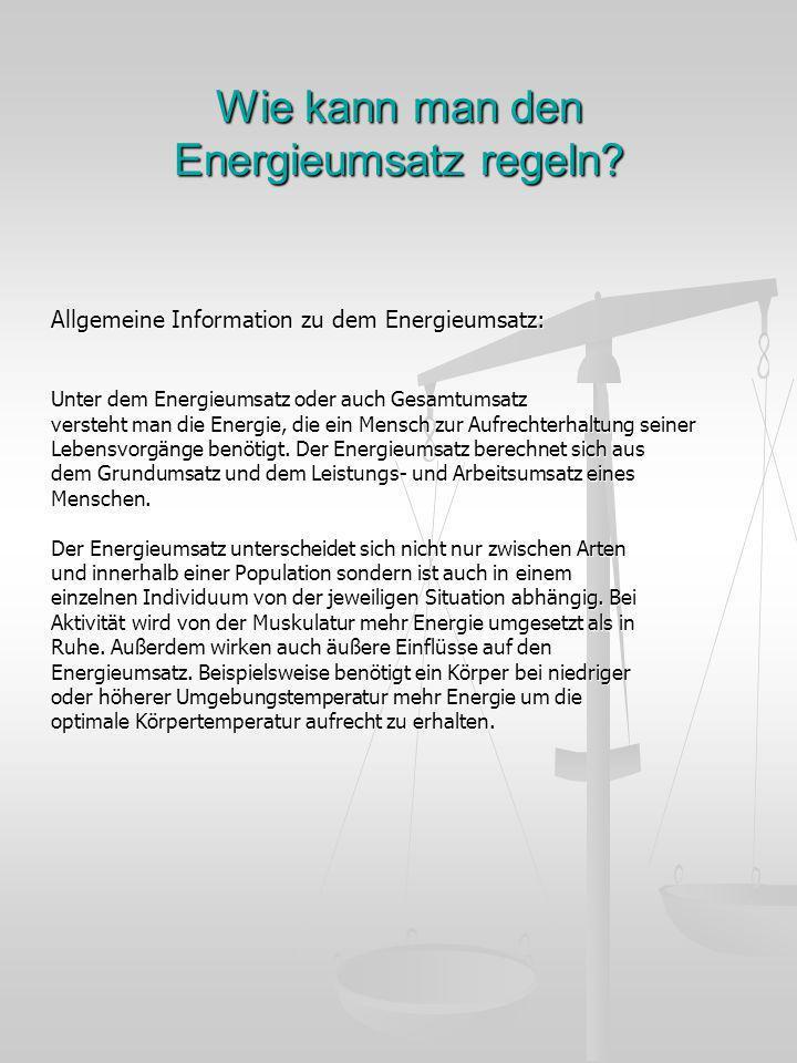 Wie kann man den Energieumsatz regeln? Allgemeine Information zu dem Energieumsatz: Unter dem Energieumsatz oder auch Gesamtumsatz versteht man die En