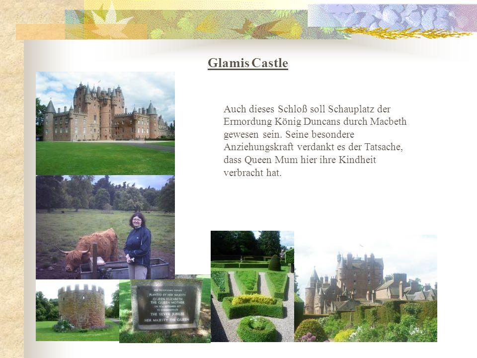 Bei herrlichem Sonnenschein sind wir zeitig aufgestanden und zur Hermitage in der Nähe von Dunkeld gefahren, danach ging es zum Glamis Castle, wo uns schon ein paar zottelige Hochlandrinder begrüßten.