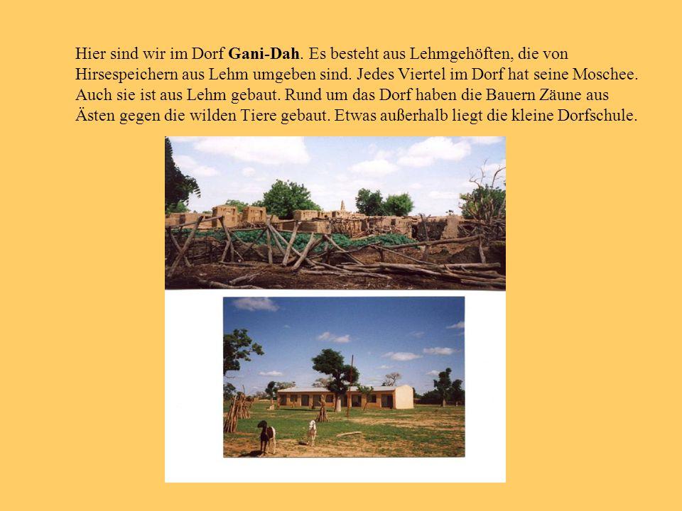 Hier sind wir im Dorf Gani-Dah. Es besteht aus Lehmgehöften, die von Hirsespeichern aus Lehm umgeben sind. Jedes Viertel im Dorf hat seine Moschee. Au