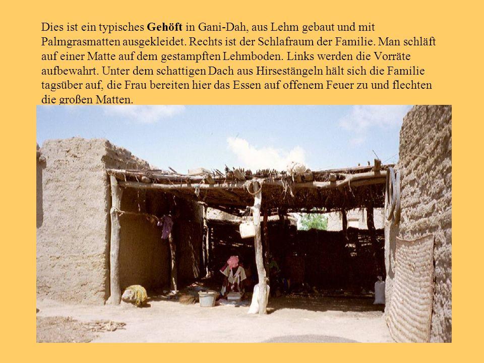Dies ist ein typisches Gehöft in Gani-Dah, aus Lehm gebaut und mit Palmgrasmatten ausgekleidet. Rechts ist der Schlafraum der Familie. Man schläft auf
