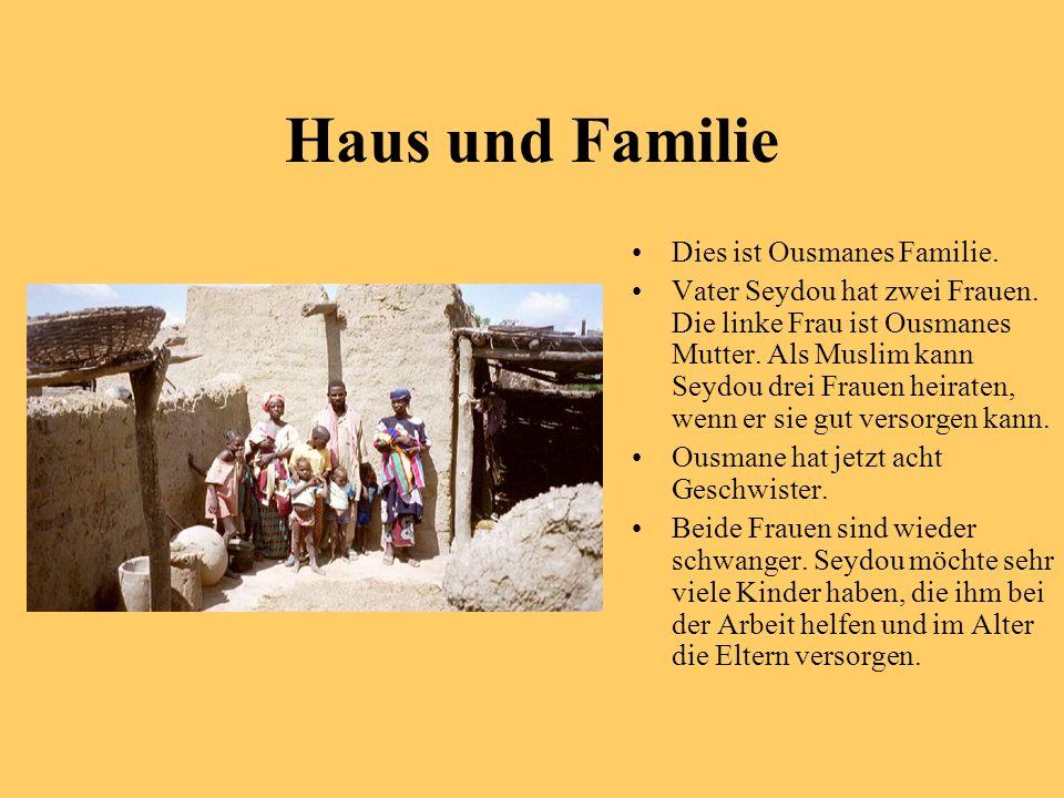 Haus und Familie Dies ist Ousmanes Familie. Vater Seydou hat zwei Frauen. Die linke Frau ist Ousmanes Mutter. Als Muslim kann Seydou drei Frauen heira