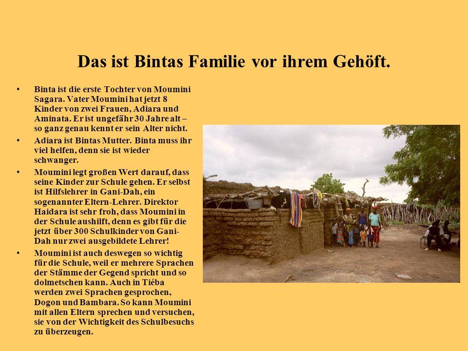 Das ist Bintas Familie vor ihrem Gehöft. Binta ist die erste Tochter von Moumini Sagara. Vater Moumini hat jetzt 8 Kinder von zwei Frauen, Adiara und
