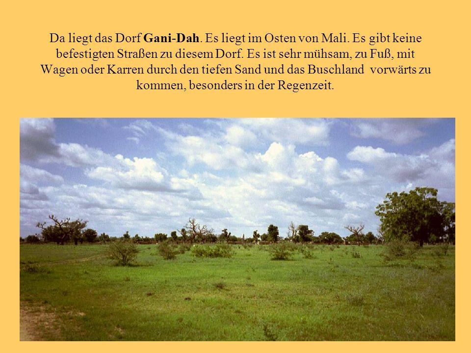 Da liegt das Dorf Gani-Dah. Es liegt im Osten von Mali. Es gibt keine befestigten Straßen zu diesem Dorf. Es ist sehr mühsam, zu Fuß, mit Wagen oder K
