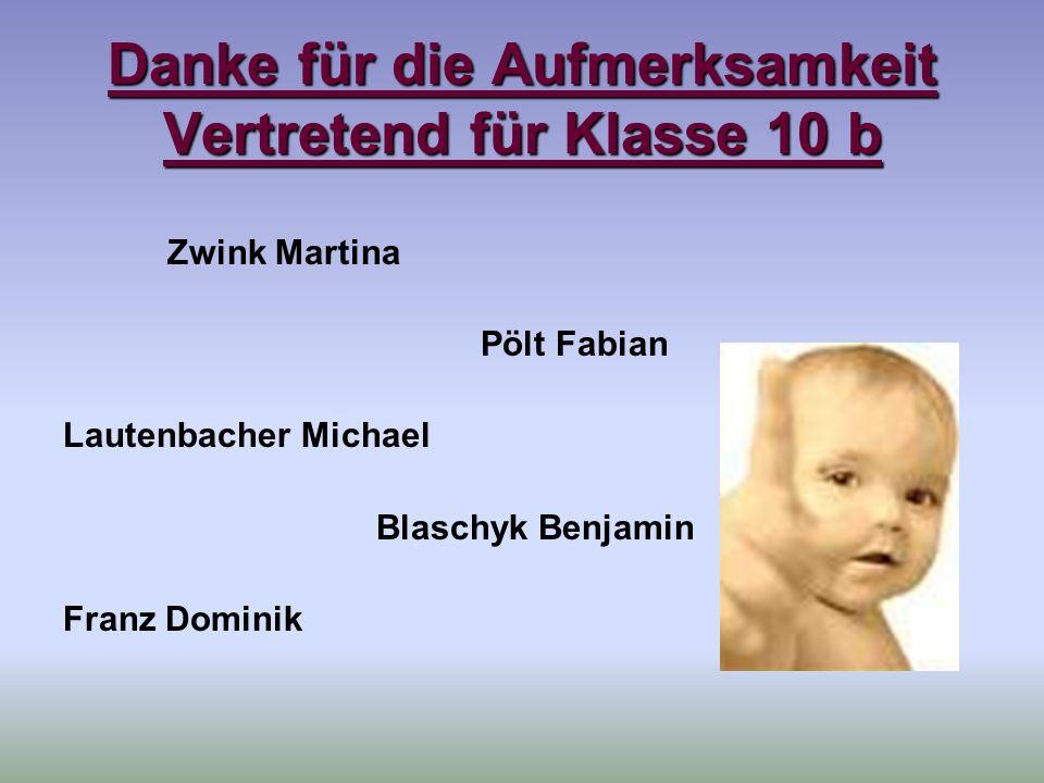 Danke für die Aufmerksamkeit Vertretend für Klasse 10 b Zwink Martina Pölt Fabian Lautenbacher Michael Blaschyk Benjamin Franz Dominik