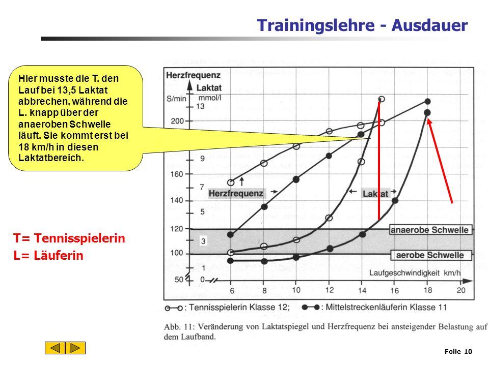 Trainingslehre - Ausdauer Folie 9 2.Energiebereitstellung in der Muskelzelle und Funktion des Herz-Kreislauf-Systems Energiegewinnung in der Muskelzel