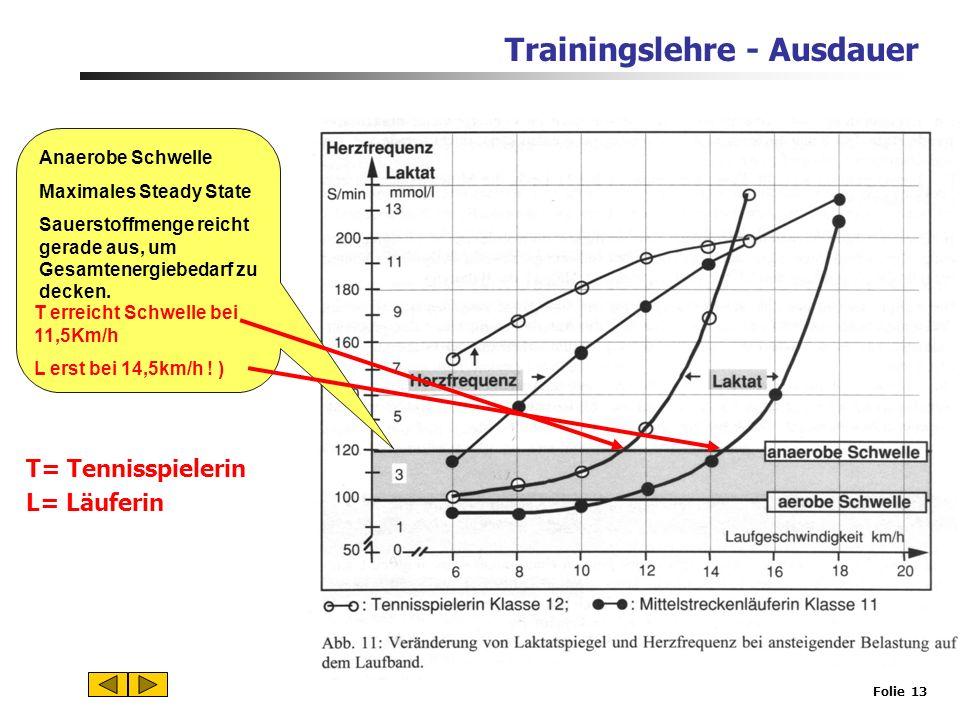 Trainingslehre - Ausdauer Folie 12 Aerob-anaerober Übergangsbereich Laktatbildung und – abbau stehen im Gleichgewicht, Laktatspiegel bleibt konstant (