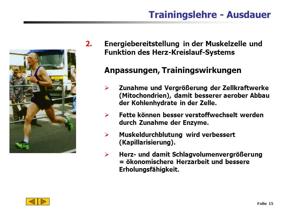 Trainingslehre - Ausdauer Folie 14 Herzfrequenz bei T zu Beginn und im Übergangsbereich deutlich höher, anschließend Annäherung an die max. Herzfreque