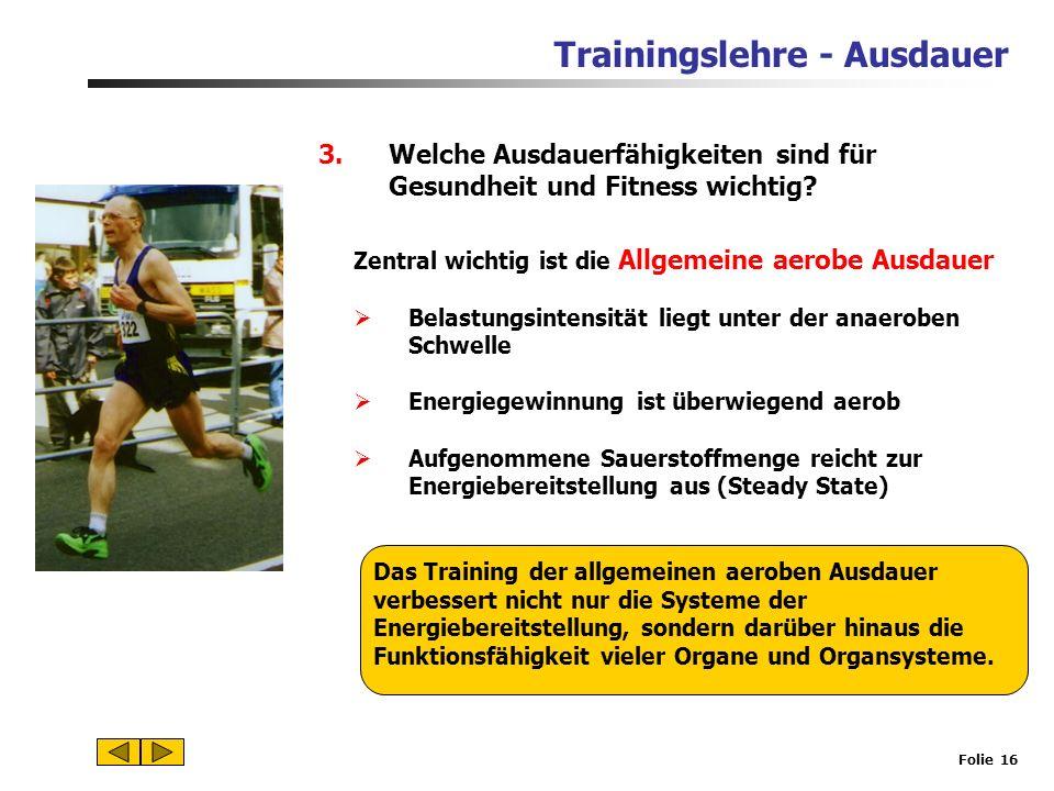 Trainingslehre - Ausdauer Folie 15 2.Energiebereitstellung in der Muskelzelle und Funktion des Herz-Kreislauf-Systems Anpassungen, Trainingswirkungen