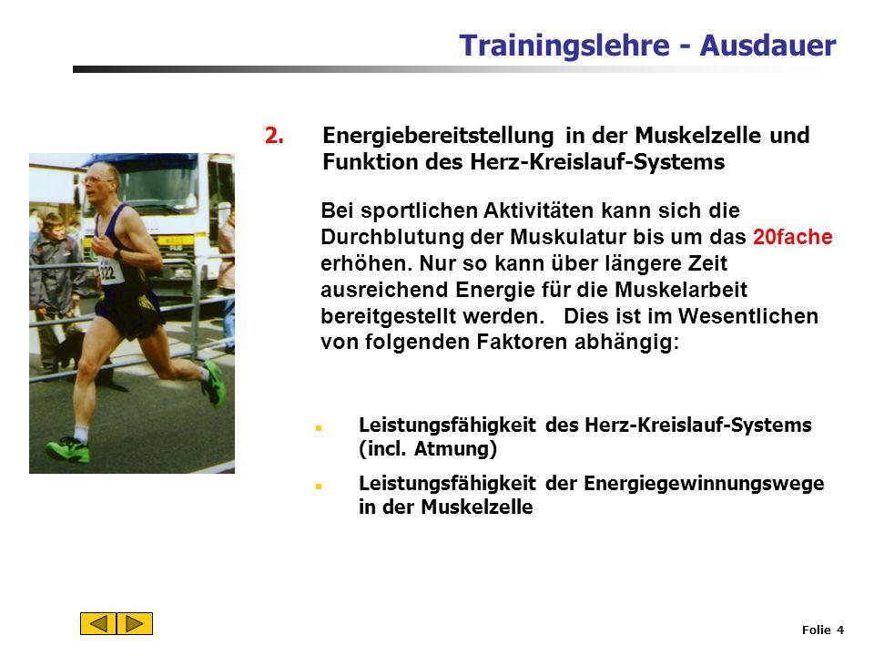 Trainingslehre - Ausdauer Folie 3 1.Lohnt sich Ausdauertraining? Definition Ausdauer ist die physische und psychische Widerstands- fähigkeit gegen Erm