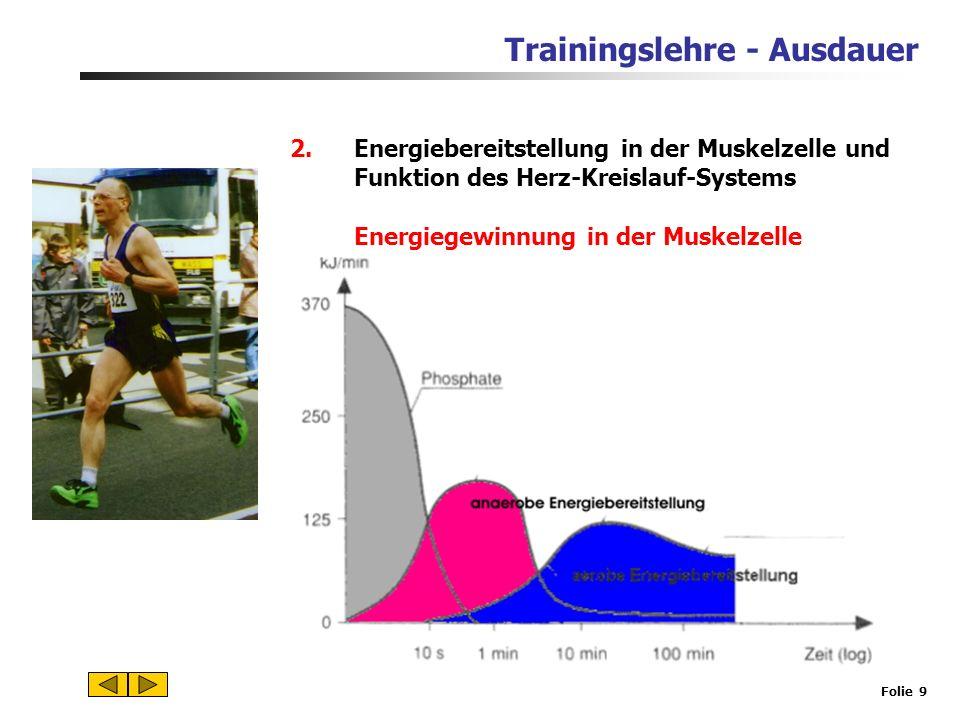Trainingslehre - Ausdauer Folie 8 Energiequelle für die Muskelzelle: Fette (Fettsäuren) unerschöpflicher Energiespeicher größerer Sauerstoffbedarf ger