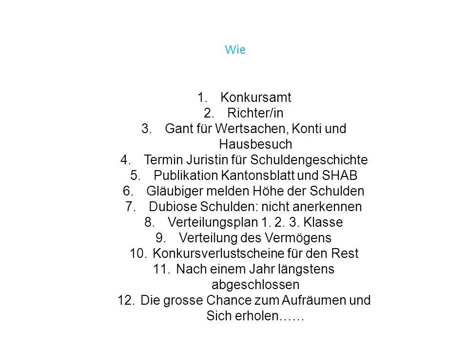 Wie 1.Konkursamt 2.Richter/in 3.Gant für Wertsachen, Konti und Hausbesuch 4.Termin Juristin für Schuldengeschichte 5.Publikation Kantonsblatt und SHAB