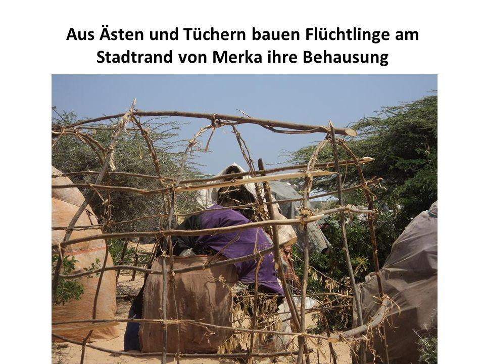 Aus Ästen und Tüchern bauen Flüchtlinge am Stadtrand von Merka ihre Behausung