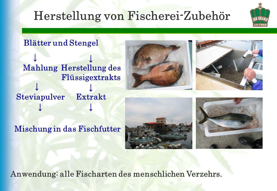 Herstellung von Fischerei-Zubehör Blätter und Stengel Anwendung: alle Fischarten des menschlichen Verzehrs. Mahlung Steviapulver Herstellung des Flüss