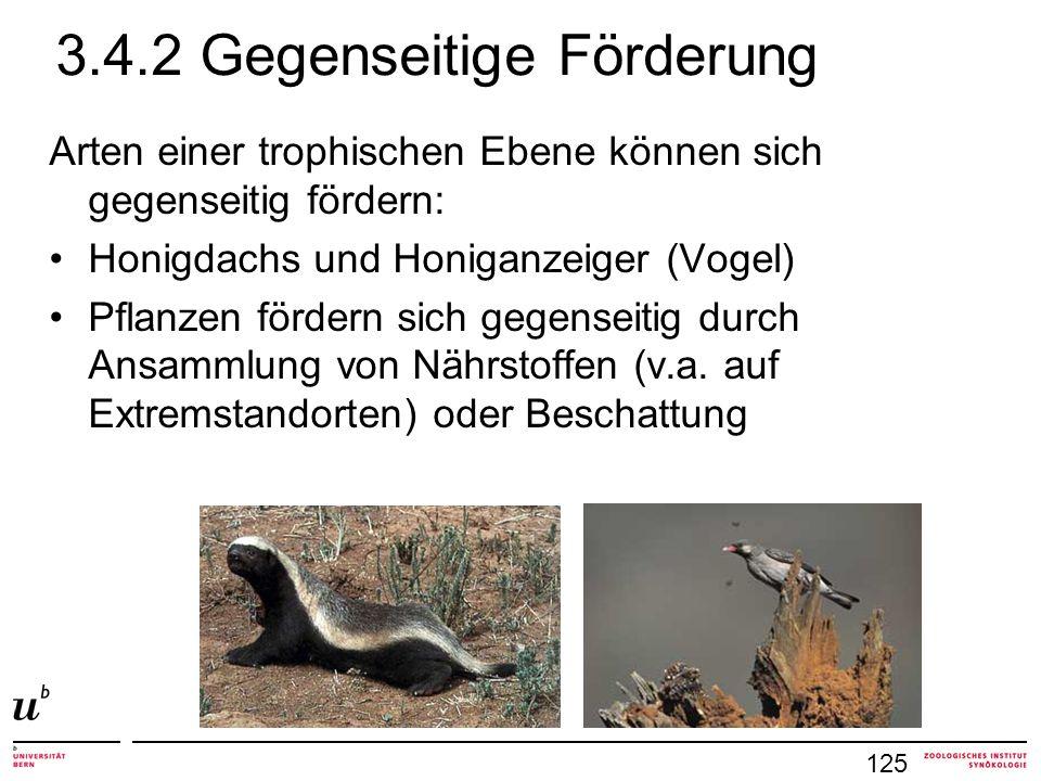 3.4.2 Gegenseitige Förderung Arten einer trophischen Ebene können sich gegenseitig fördern: Honigdachs und Honiganzeiger (Vogel) Pflanzen fördern sich gegenseitig durch Ansammlung von Nährstoffen (v.a.