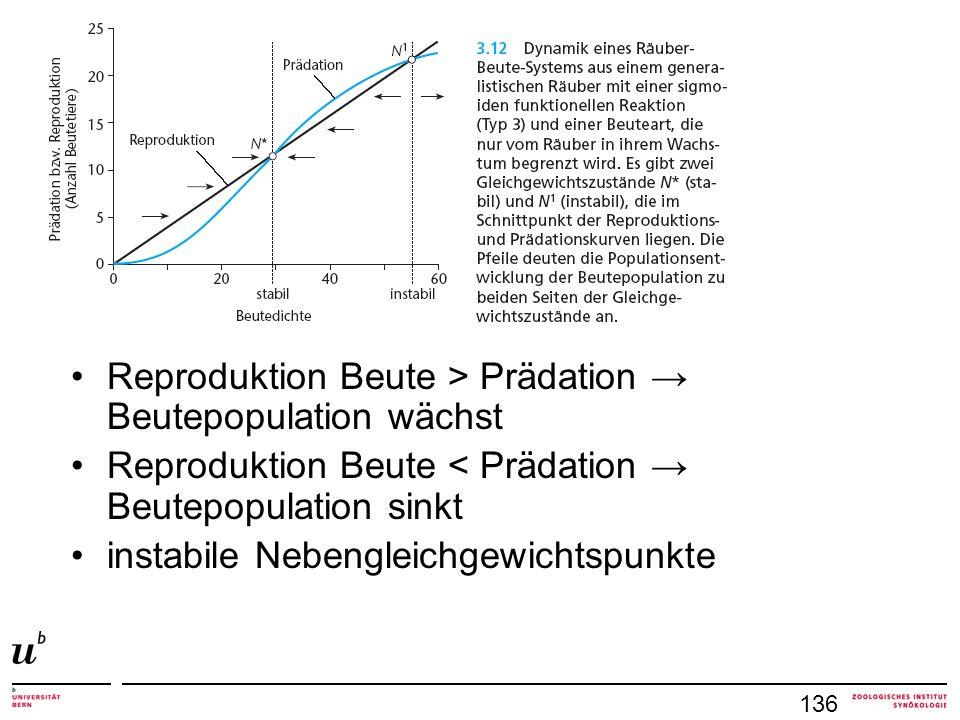Reproduktion Beute > Prädation Beutepopulation wächst Reproduktion Beute < Prädation Beutepopulation sinkt instabile Nebengleichgewichtspunkte 136